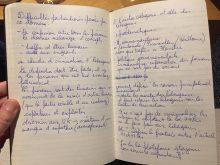 aantekeningen Camille Vernin