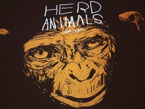HERD_Animals_01